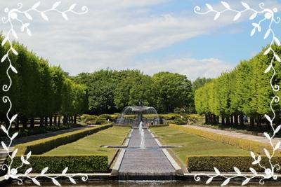20130502昭和記念公園.JPG